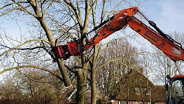 Renovatiewerkzaamheden Parkontwikkeling Waldervaart – Nieuws