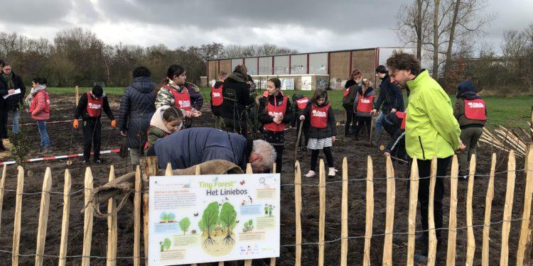 Kinderen planten eerste tiny forest