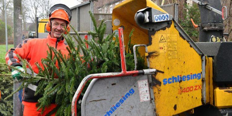 Winnende lotnummers kerstbomen bekend
