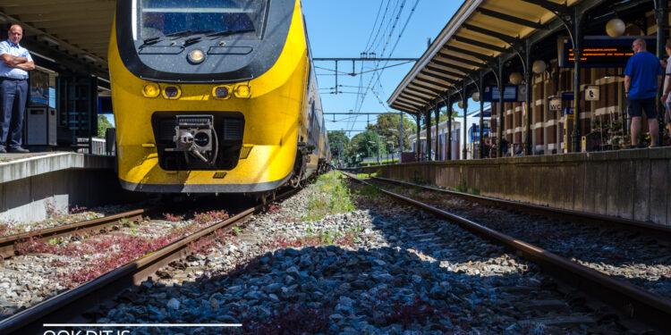 NS dienstregeling 2022: Meer Intercity's tussen Alkmaar – Haarlem; Hoorn minder spitstreinen